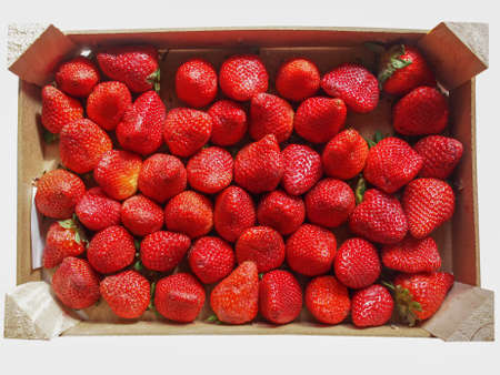 Strawberry fruit aka garden strawberry or fragaria in a fruit crate