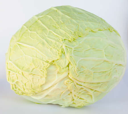 edible leaves: Cabbage leafy vegetable plant with edible leaves