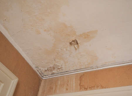 dankness: Damage caused by damp and moisture on a ceiling