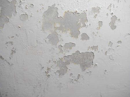 causaba: Los da�os causados ??por la humedad y la humedad en una pared
