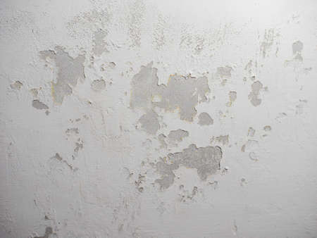 wetness: Damage caused by damp and moisture on a wall