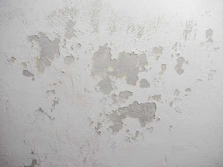 damp: I danni causati da umidit� e umidit� su un muro Archivio Fotografico