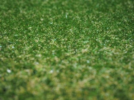 prato sintetico: Verde artificiale erba sintetica trama prato utile come sfondo