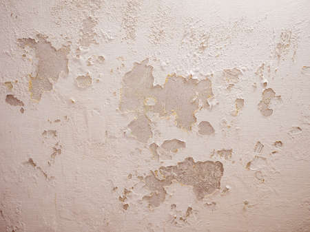 wetness: Vintage looking Damage caused by damp and moisture on a wall