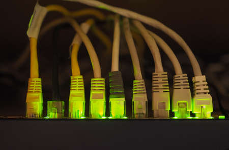 gigabit: Switch and cables used in networking