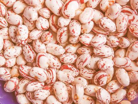 borlotti beans: Vintage looking Cranberry variety of common beans aka Crimson bean or Borlotti bean or Roman bean Stock Photo