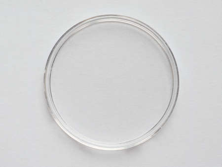specimen: Clear plastic container for lab specimen or collecting items such as coins