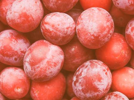 ciruela pasa: Detalle de �poca en busca de frutos de ciruela de comida vegetariana y saludable