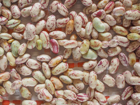 borlotti beans: Crimson beans (Phaseolus vulgaris) aka borlotti beans or cranberry beans vegetables, vegetarian food useful as a background Stock Photo
