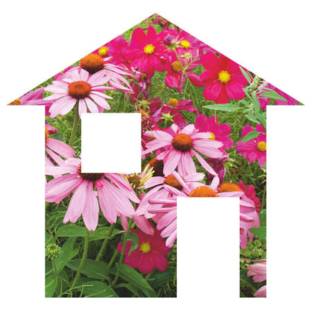 moving site: Flowers house 2d model illustration isolated over white