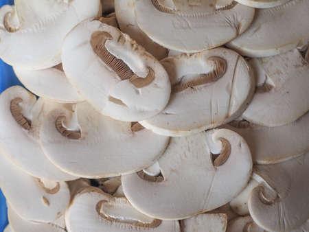 agaricus: Agaricus bisporus aka champignons mushrooms food useful as a background