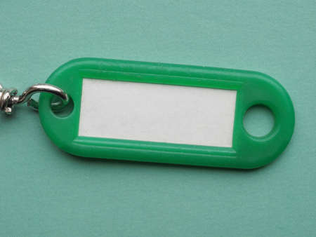 keychain: Green key ring with blank paper label with copy space