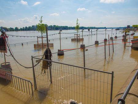 mainz: River Rhine Flood in Mainz, Germany