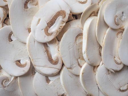 champignons: Agaricus bisporus aka champignons mushrooms food useful as a background
