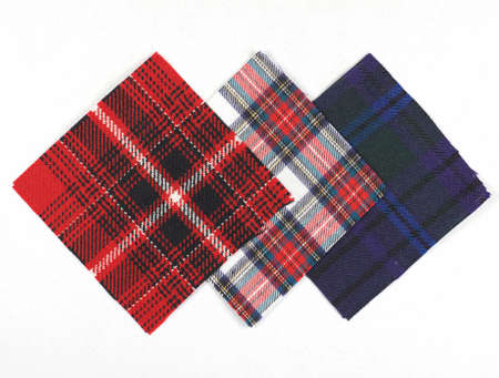 swatch: Tartan fabric swatch over white background