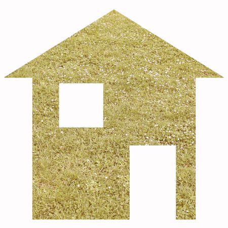 moving site: Green grass house 2d model illustration isolated over white