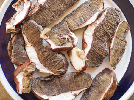 porcini: Porcini mushrooms in a dish