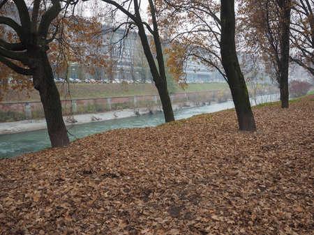 dora: Banks of Dora Riparia river in winter in Regio Parco (meaning Royal Park) quarter in Turin, Italy Stock Photo