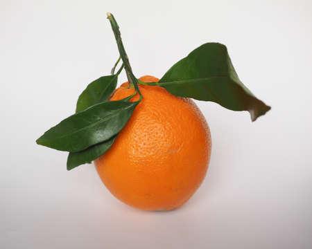 sweet orange: Sweet orange (Citrus x sinensis)  fruit vegetarian food