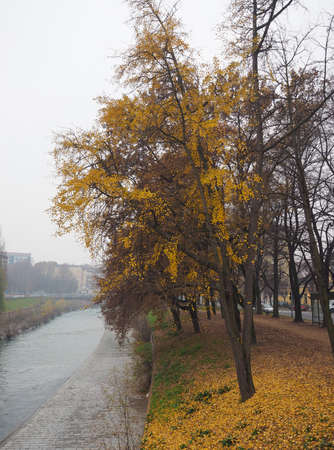 the royal park: Banks of Dora Riparia river in winter in Regio Parco (meaning Royal Park) quarter in Turin, Italy Stock Photo