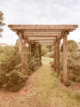 passageway: A pergola in a  garden forming a shaded walkway, passageway or sitting area vintage