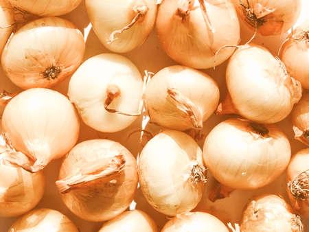 cebollitas: Vintage looking Onions vegetables picture Foto de archivo