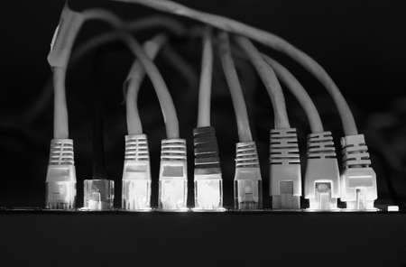routers: Switch and ethernet cables used in networking in black and white