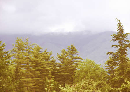 hill range: Vintage looking Panoramic view of a hill or mountain - High dynamic range Stock Photo
