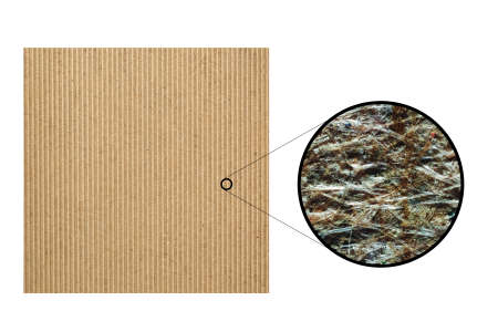 micrograph: Brown corrugated cardboard light photomicrograph seen through an optical microscope. Cellulose fibers and colour ink from recycled paper are visible