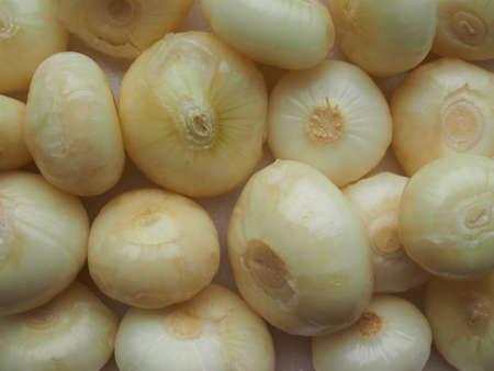 allium cepa: Onions (Allium cepa) aka bulb onion or common onion vegetables vegetarian food Stock Photo