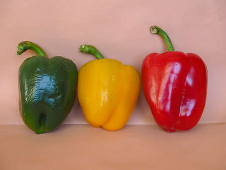 bell peppers: Red Green and Yellow Peppers (Capsicum) aka bell peppers vegetables vegetarian food