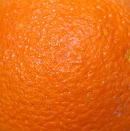 sweet orange: Sweet orange (Citrus x sinensis) fruit texture