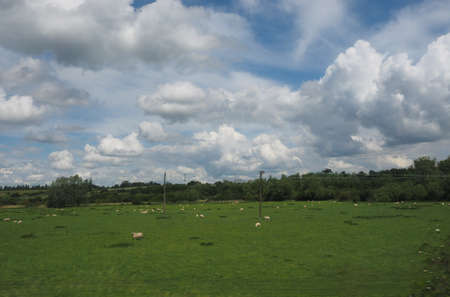 focus in foreground: English countryside seen from a train to London, with selective focus on the horizon and motion blur on the foreground Stock Photo
