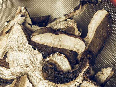 cep: Vintage desaturated Boletus edulis aka penny bun or porcino or cep mushrooms Stock Photo