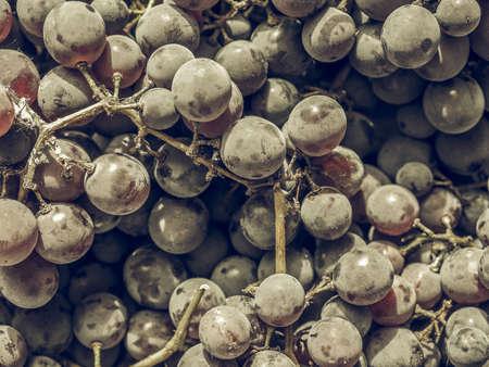 desaturated: Vintage desaturated Red grape (Vitis vinifera) fruits, healthy vegetarian food Stock Photo