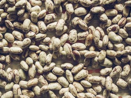 borlotti beans: Vintage desaturated Crimson beans (Phaseolus vulgaris) aka borlotti beans or cranberry beans vegetables, vegetarian food useful as a background