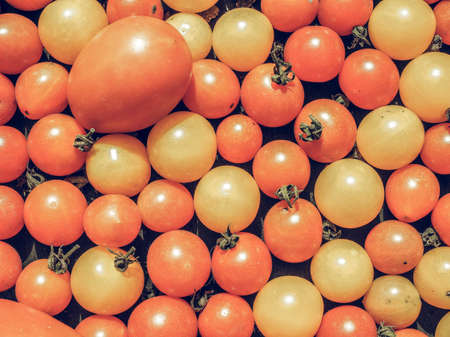 Vintage desaturated Cherry tomatoes (Solanum lycopersicum) vegetables, vegetarian food useful as a background