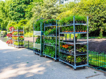 occurs: LONDON, UK - JUNE 11, 2015: Gardening works in St James Park occurs in every spring to plant new flowers (HDR)