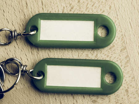 keyring: Vintage looking Green key ring with blank paper label with copy space
