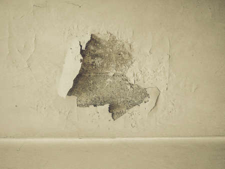 caused: Vintage looking Damage caused by damp and moisture on a wall