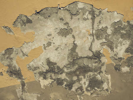 damp: Vintage looking Damage caused by damp and moisture on a wall