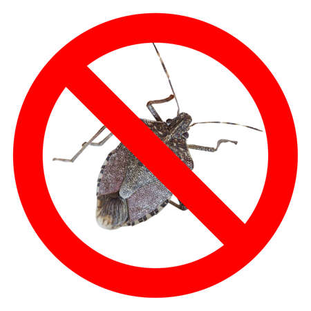 No bugs sign, red regulatory signal over real bug photo