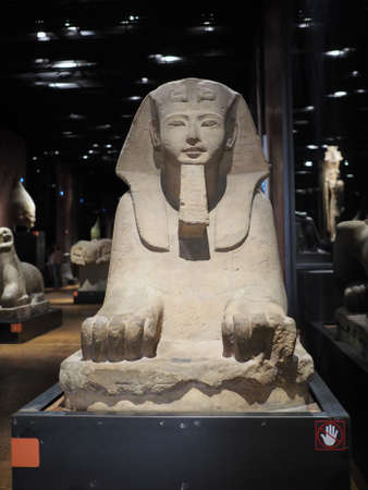 TURIN, ITALY - CIRCA MARCH 2017: Sphinx at Museo Egizio (meaning Egyptian Museum)