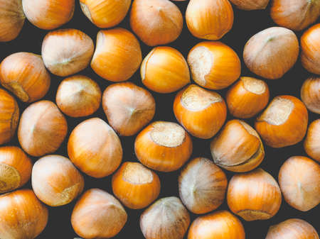 filbert nut: Hazelnut dried fruits aka cobnut or filbert nut useful as background, vintage faded look