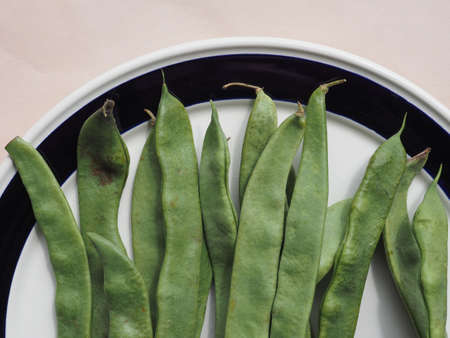 snap bean: mangetout (meaning Eat All) aka Snow pea or Snap Pea legumes vegetables vegetarian food Stock Photo