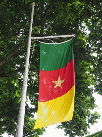cameroonian: the Cameroonian national flag of Cameroon, Africa
