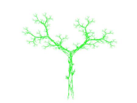 fractals: Green Barnsley set fern abstract fractal illustration useful as a background