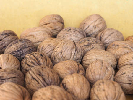 many walnuts with shell useful as a background Imagens
