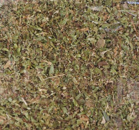 Oregano herb aka wild marjoram or majorana or sweet marjoram