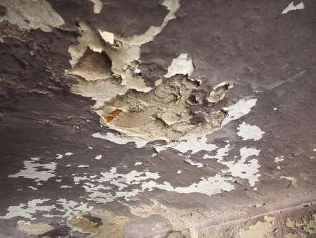 damage caused by damp moisture and water infiltrations on wall and vault ceiling